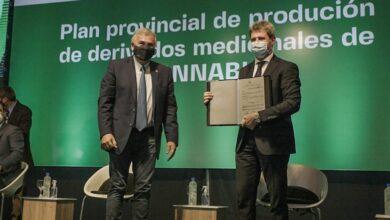 Photo of En Jujuy, Uñac firmó un convenio con Israel para capacitar al personal de salud en el uso e indicaciones del cannabis medicinal