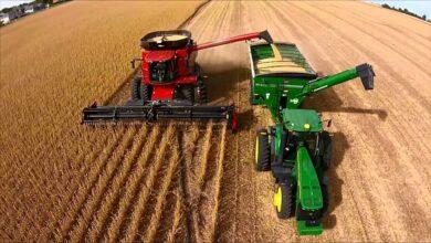 Photo of Gracias a los buenos precios internacionales, el valor de la cosecha cordobesa crecerá un 50% respecto al año pasado y será récord